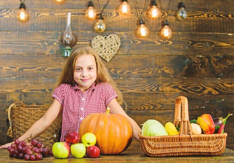 Het concept van het oogstfestival Het jong geitjemeisje dichtbij mandhoogtepunt van verse groenten oogst rustieke stijl Kindmeisj stock afbeeldingen