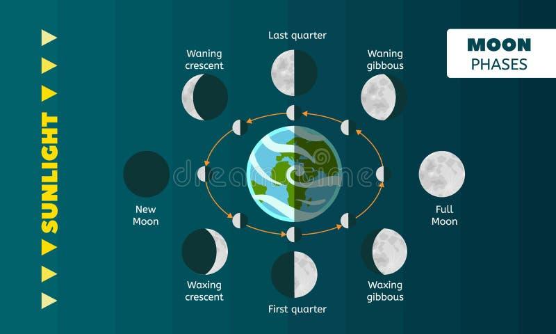 Het conceptenachtergrond van maanfasen, vlakke stijl royalty-vrije illustratie