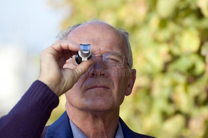 Het controleren van de Inhoud van de Suiker van Druif royalty-vrije stock afbeelding
