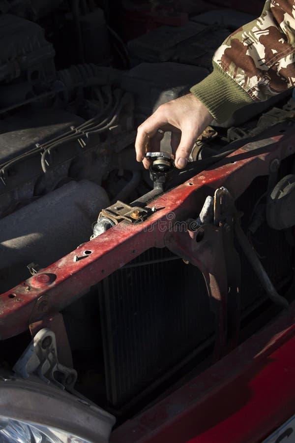 Het controleren van het koelmiddelenniveau in de auto GLB van de radiator, controlevloeistof, vervangingsvloeistof stock foto