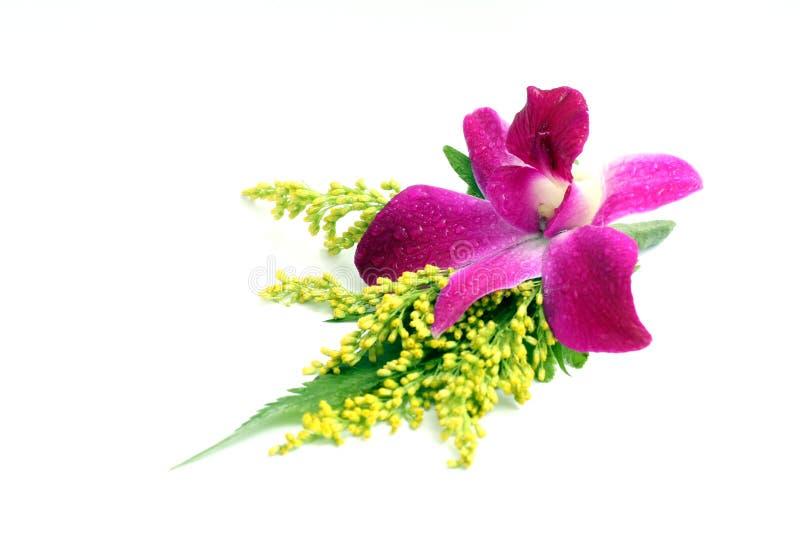 Het corsage van de orchidee royalty-vrije stock afbeelding
