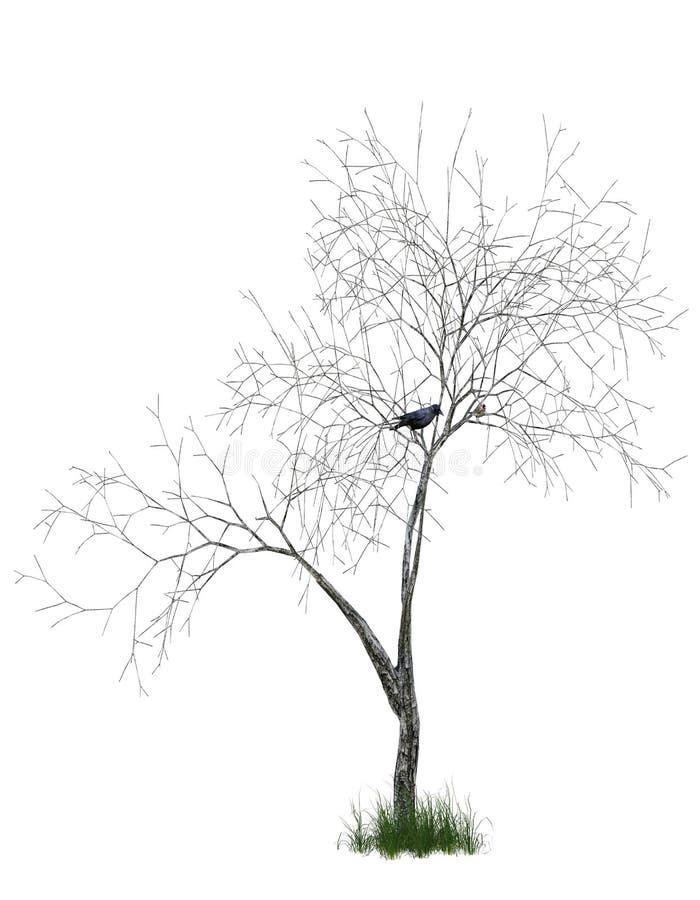 het 3D teruggeven van doodsboom vector illustratie