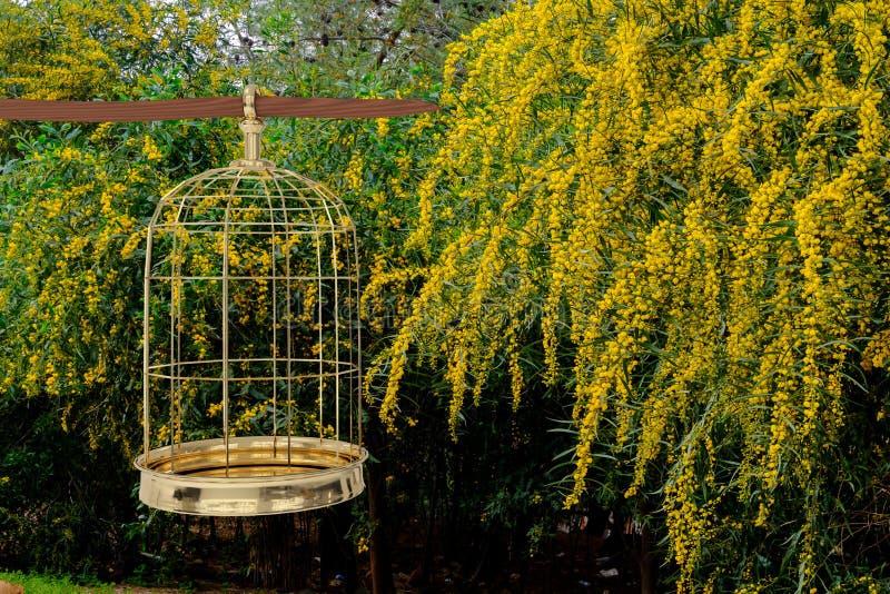 het 3D teruggeven van een gouden vogelkooi op tuin vector illustratie