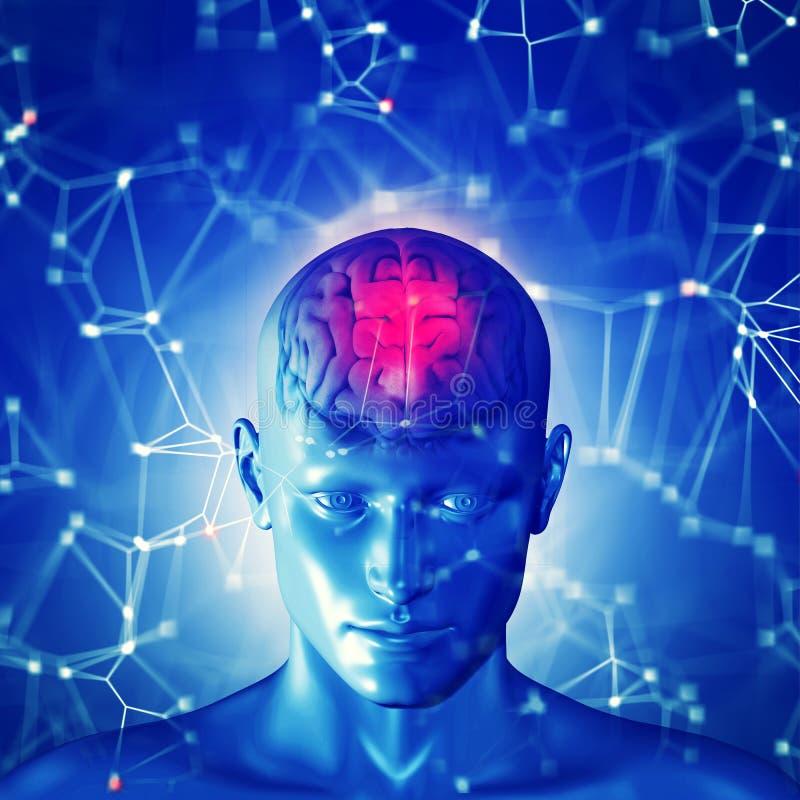 het 3d teruggeven van een menselijk hoofd met benadrukte hersenen royalty-vrije illustratie