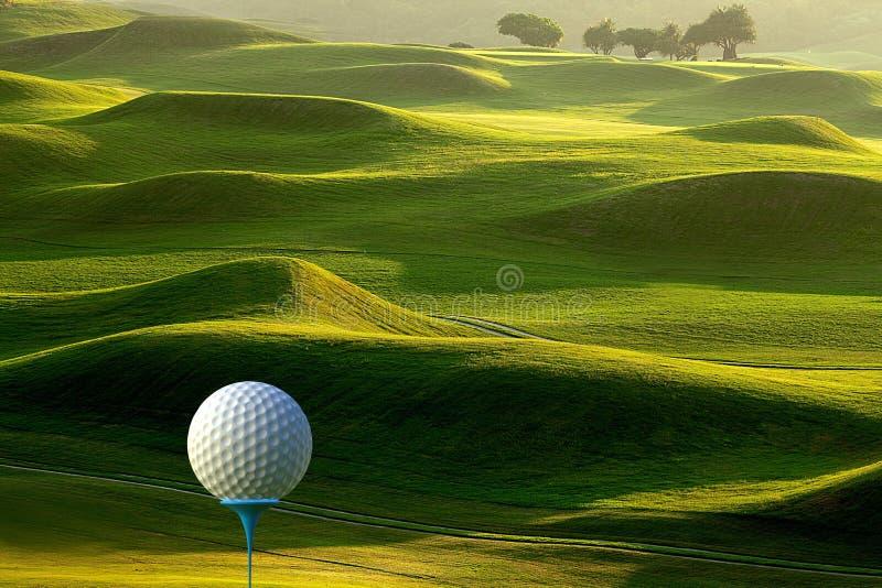 het 3d teruggeven van Golfbal op T-stuk over vage groen vector illustratie