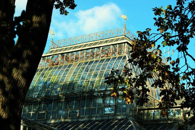 Het dak van de serre Botanische Tuin in St. Petersburg royalty-vrije stock afbeeldingen