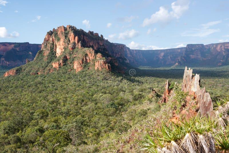 Het dal doet Rio Claro royalty-vrije stock foto's