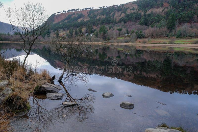 Het de Bergen Nationale Park van Wicklow stock foto
