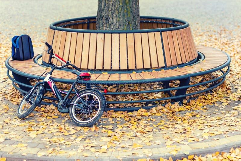Het de kindrugzak en fietsenrek bij Moderne houten die cirkel vormden bank rond boom in stadspark wordt geïnstalleerd of straat w royalty-vrije stock foto's