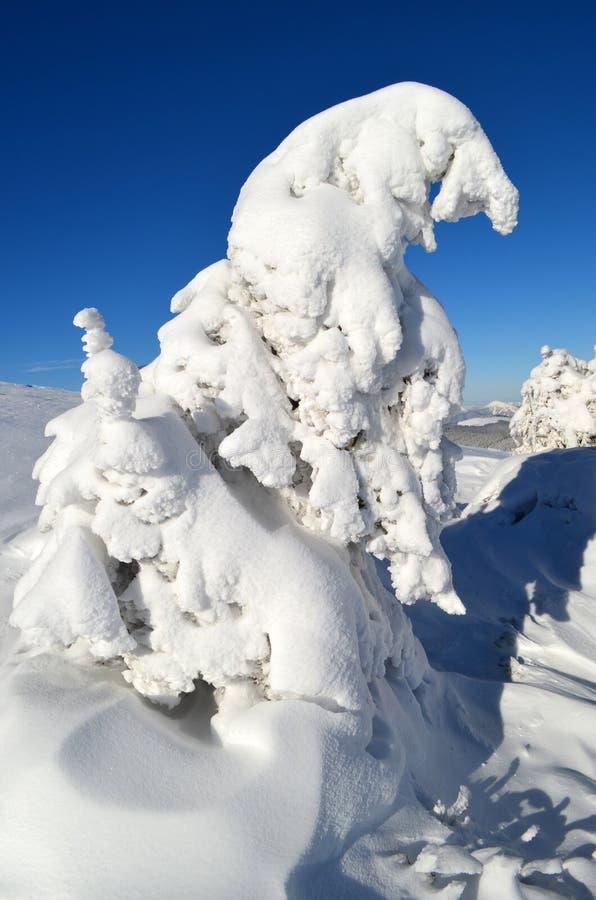 Het de Wintersverhaal stock afbeelding