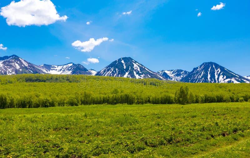 Het de zomerlandschap in bergen en de blauwe hemel met wolken stock foto's