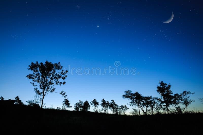 Het de zonsopganglandschap van de nacht met de maan, bomen silhouetteert, sterren stock foto's