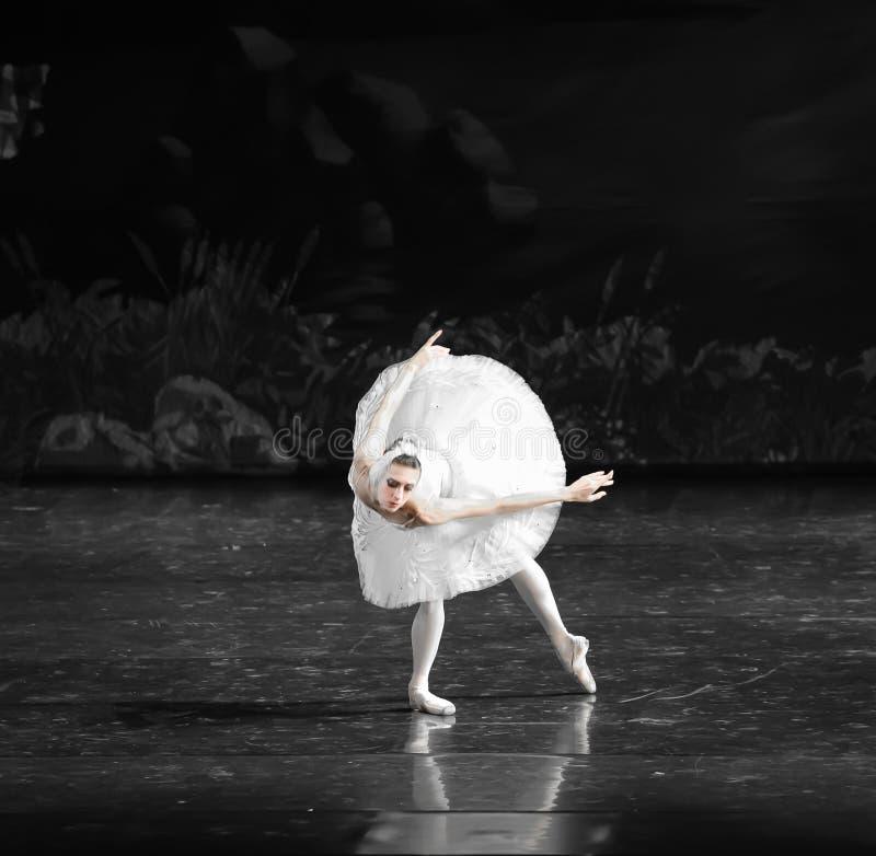 Het de Zwaanmeer van het Zwaan zwemmen-ballet stock foto