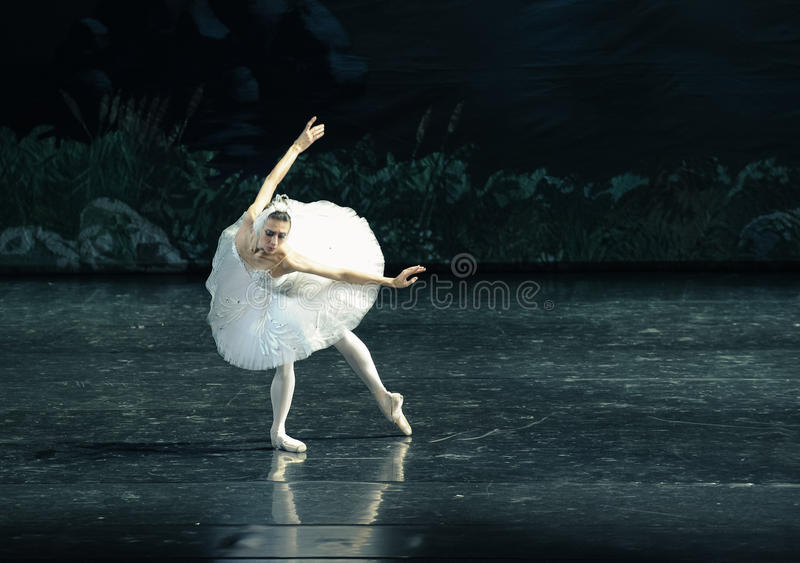 Het de Zwaanmeer van het Zwaan zwemmen-ballet royalty-vrije stock fotografie