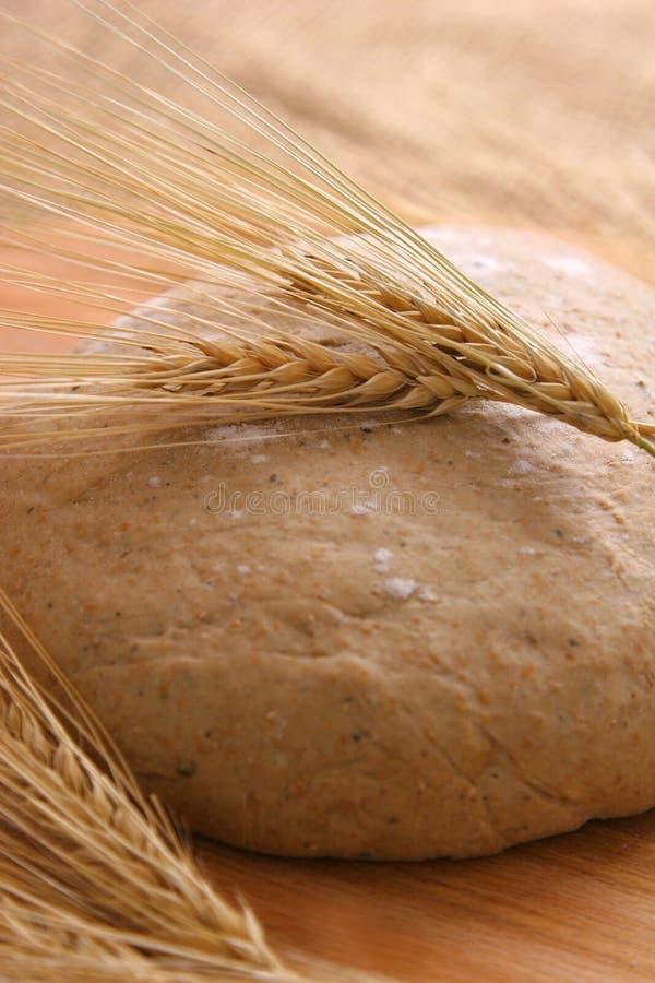 Het deeg van het brood royalty-vrije stock foto's