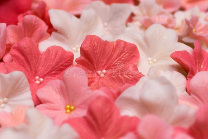 Het deegbloemen van de suiker royalty-vrije stock afbeelding