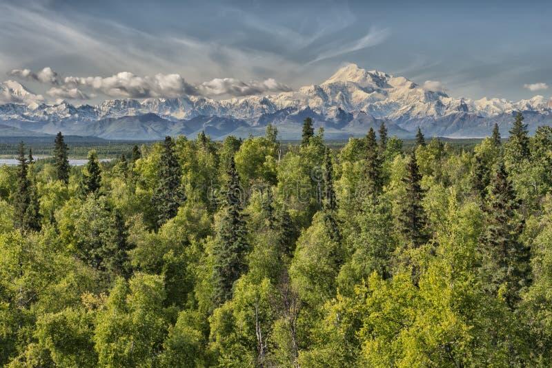 Het Denalipark zet Mc Kinley panorama op royalty-vrije stock afbeelding