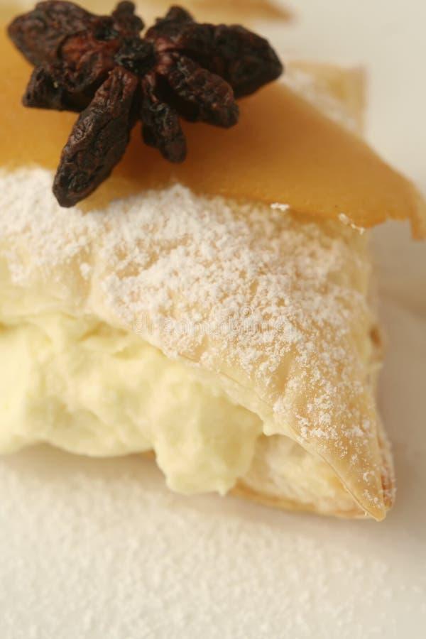 Het dessertmacro van de citroen wijd stock foto's