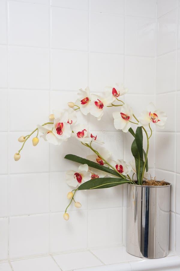 Het detail van de badkamers royalty-vrije stock foto