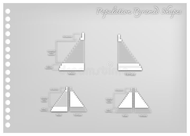 Het detail van de Grafieken van de Bevolkingspiramide hangt van Leeftijd af stock illustratie