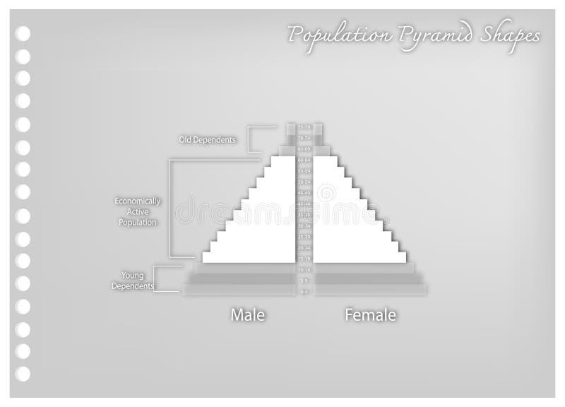 Het detail van de Grafieken van Bevolkingspiramides hangt van Leeftijd af vector illustratie