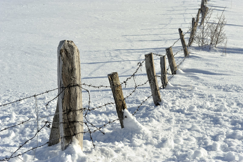 Het detail van de sneeuw stock foto