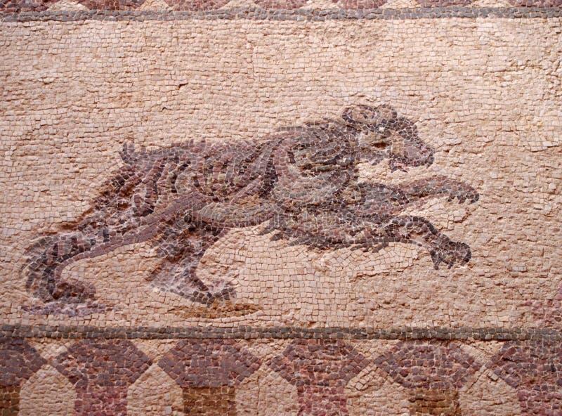 het detail van een oud roman vloermozaïek met het beeld van de jacht draagt van de archeologische ruïnes die als het huis worden  stock afbeeldingen