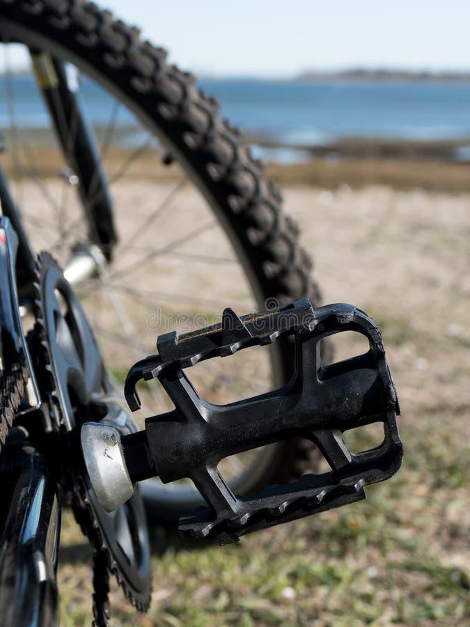 Het detail van het fietspedaal op beuk royalty-vrije stock foto