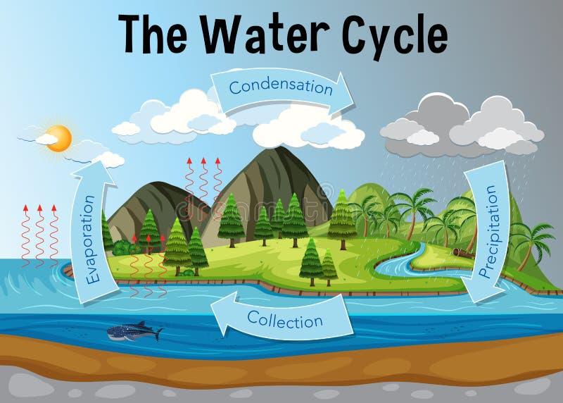 Het diagram van de watercyclus royalty-vrije illustratie