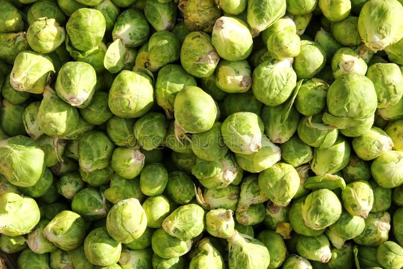 Het dieet van de het fruitgroente van de de lentezomer detox Sluit omhoog van oogst pi stock afbeeldingen