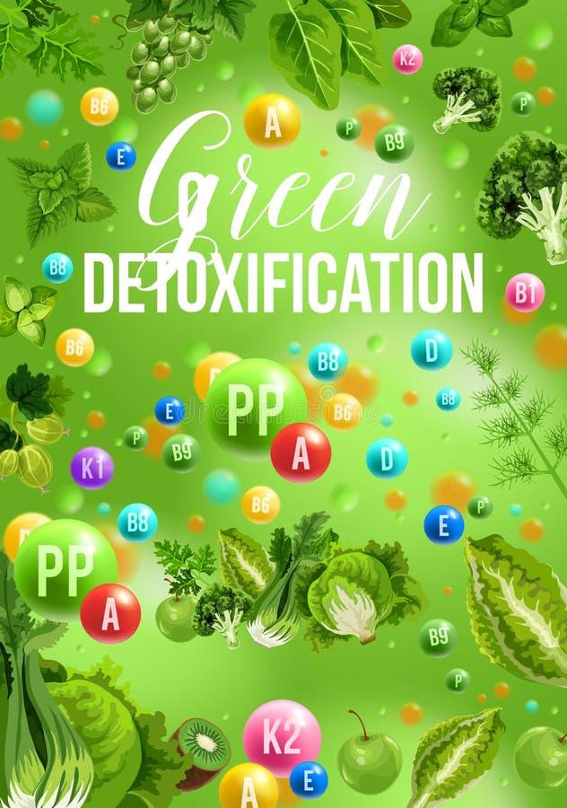 Het dieetaffiche van de Detoxkleur met het groene menu van het dagvoedsel royalty-vrije illustratie