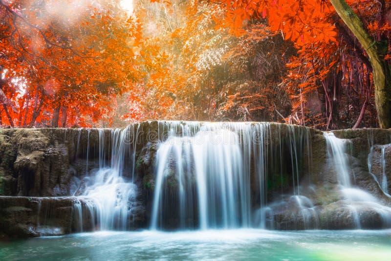 Het diepe bos toneel natuurlijke zonlicht van de watervalherfst stock afbeeldingen