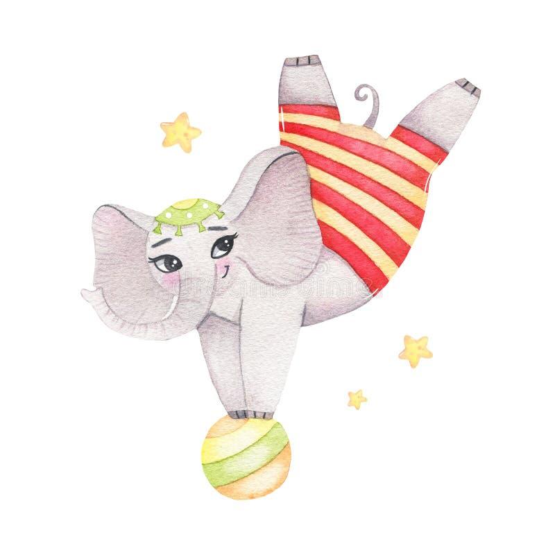 Het dieren leuke acrobatische olifant van het waterverfcircus op bal die op witte achtergrond wordt geïsoleerd royalty-vrije stock foto