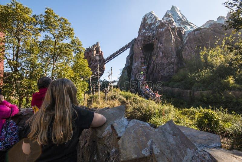 Het Dierenrijk van Disney royalty-vrije stock afbeeldingen