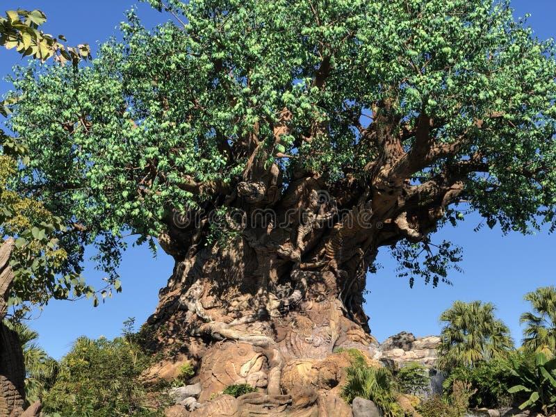 Het Dierenrijk van Walt Disney World ` s royalty-vrije stock foto's