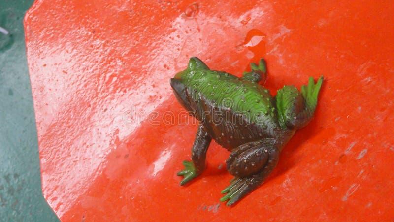 Het dierlijke groene stuk speelgoed van het kikkerwater royalty-vrije stock fotografie