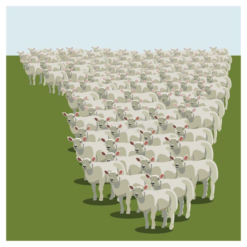 Het dierlijke schapenkudde een rij vormen stock illustratie
