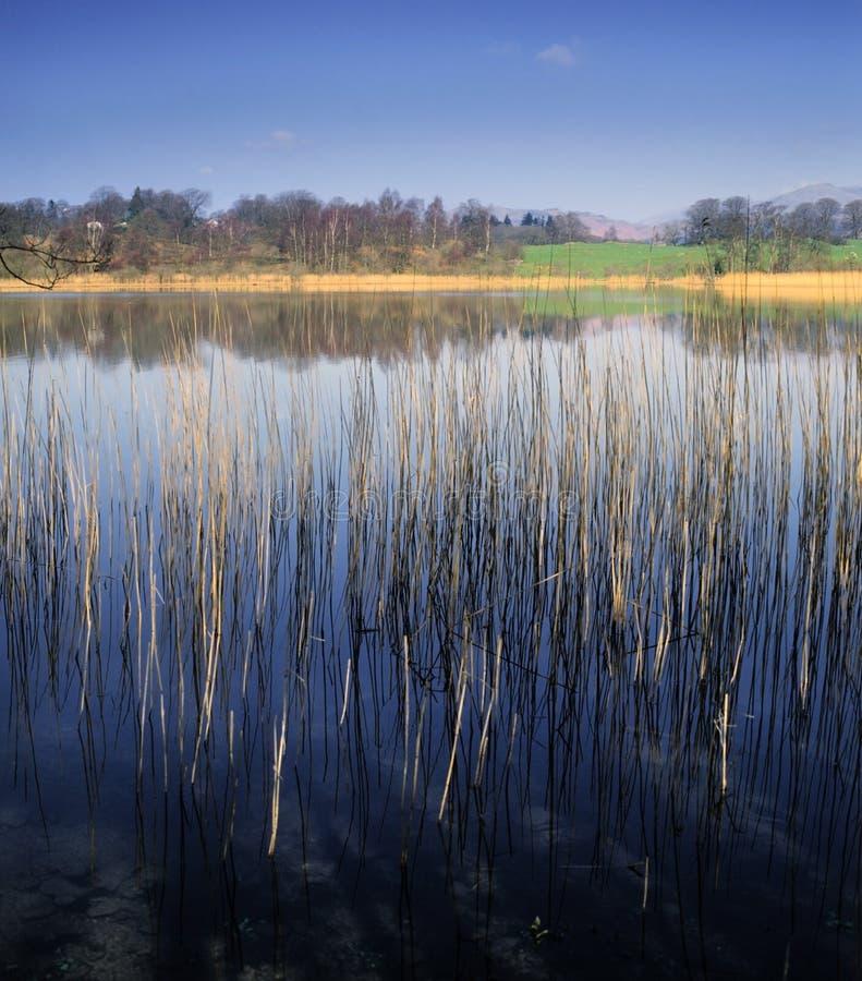 Het district van het meer stock afbeelding