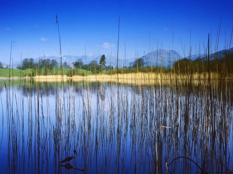 Het district van het meer stock foto