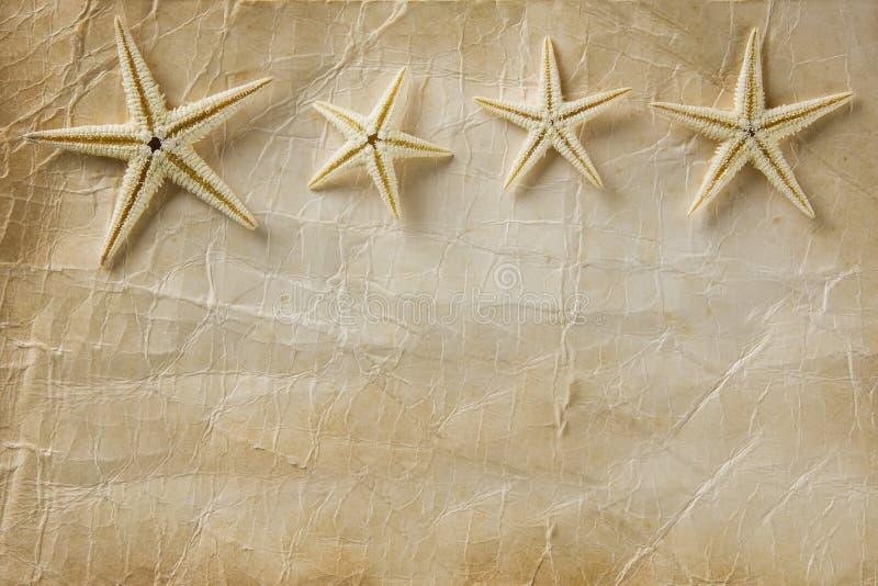 Het Document van de zeester royalty-vrije stock afbeeldingen