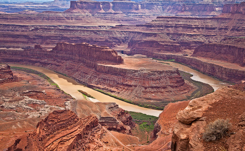 Het dode Park van de Staat van het Punt van het Paard stock fotografie