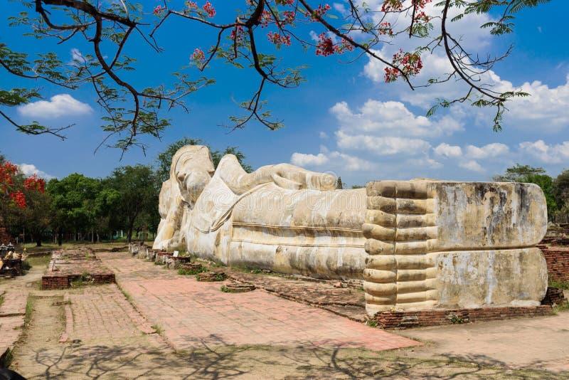 Het doen leunen van het standbeeld van Boedha in Ayuttaya, Thailand stock foto's