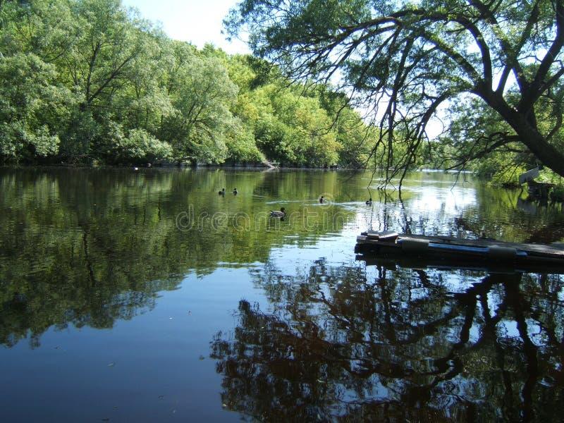 Het dok van de rivier stock fotografie