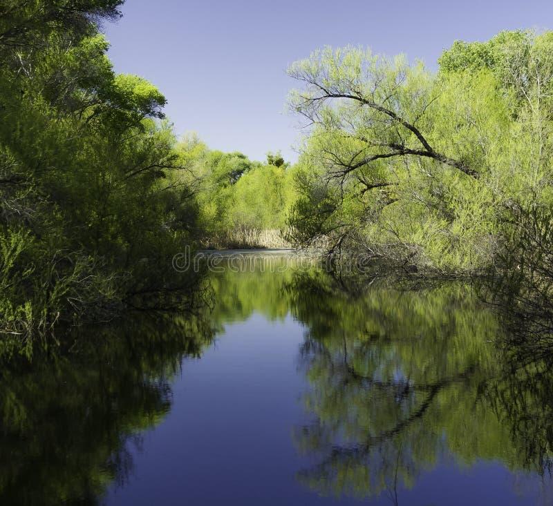 Het Domein van de Hassayamparivier, Wickenburg, Arizona royalty-vrije stock afbeeldingen