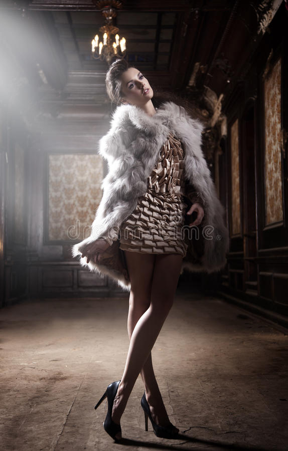 Het donkerbruine stellen van de schoonheid royalty-vrije stock afbeelding