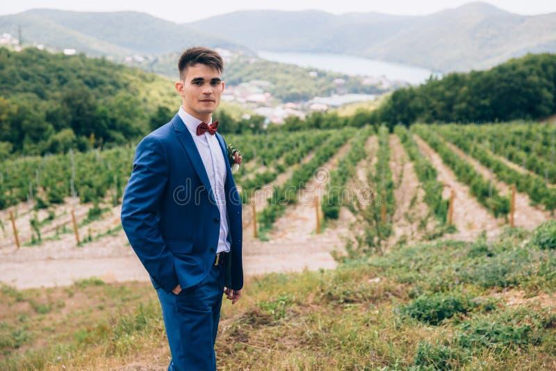 Het donkerharige in een blauw kostuum loopt in aard en stelt tegen de achtergrond van groene wijngaarden, bergen en royalty-vrije stock fotografie