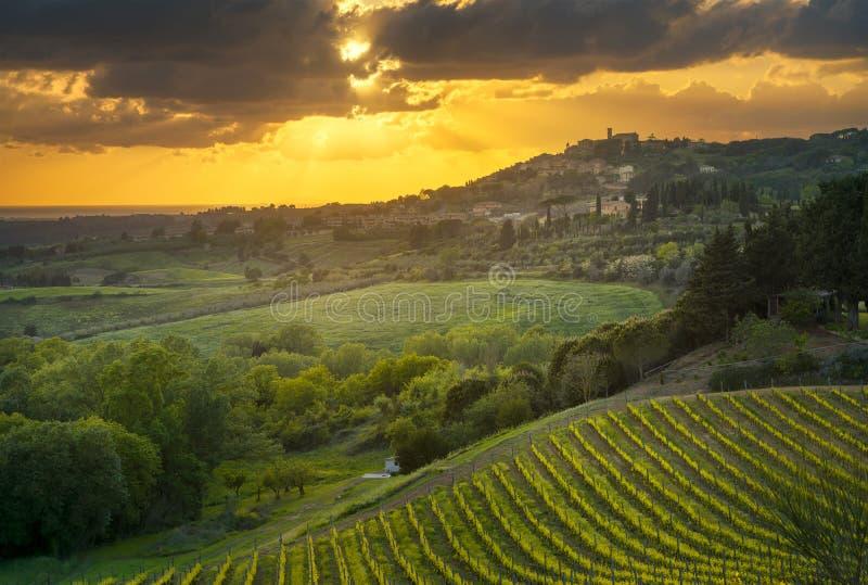 Het dorp, de wijngaarden en het landschap van Casalemarittimo in Maremma Turkije royalty-vrije stock afbeelding