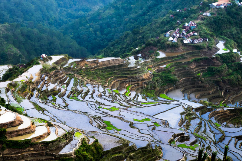 Het dorp huisvest dichtbij de gebieden van rijstterrassen Verbazende abstracte textuur Banaue, Filippijnen royalty-vrije stock afbeelding