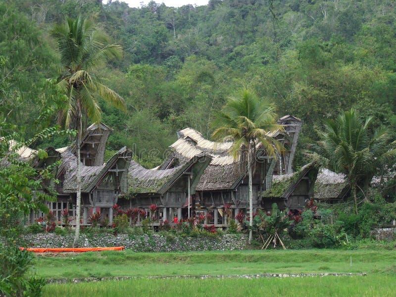 Het dorp Tana Toraja van Ke'tekesu in Sulawesi stock foto's