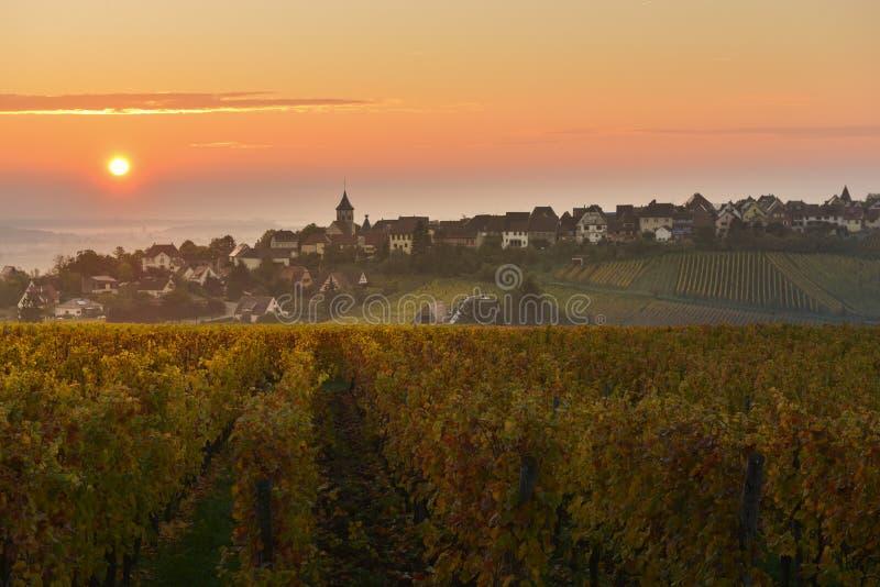 Het Dorp van Zellenberg bij zonsopgang, de wijngaard van de Elzas, Frankrijk stock afbeelding